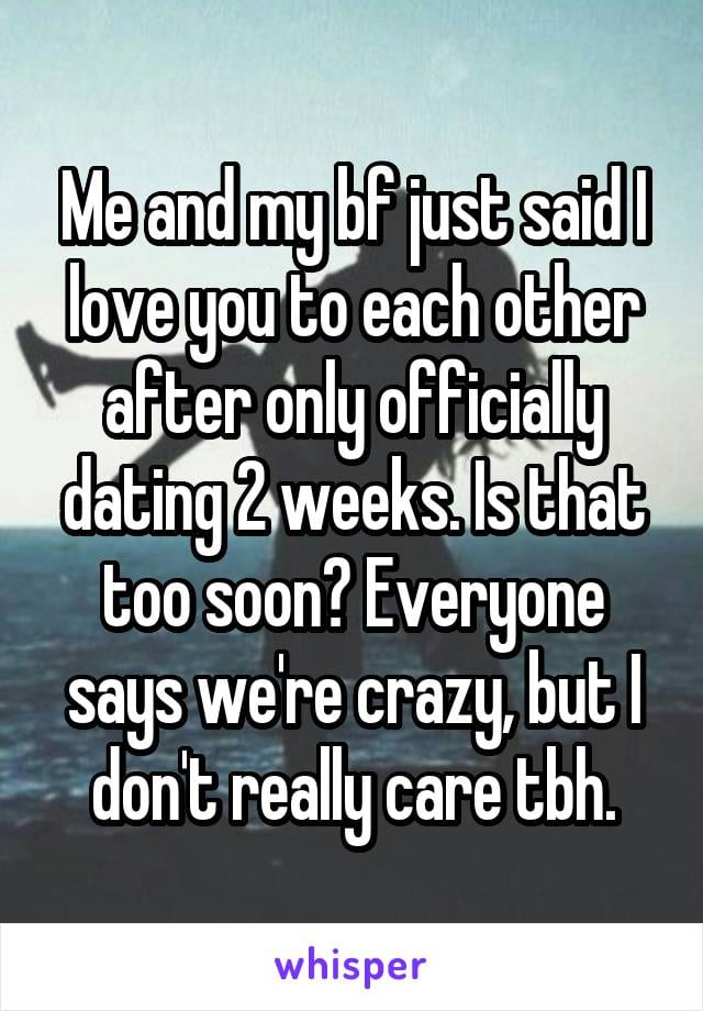 Me and my boyfriend just said I love you to each other after only officially dating two weeks. Is that too soon? Everyone says we're crazy, but I don't really care to be honest.